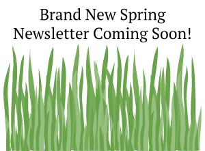 Brand New Spring Newsletter Coming Soon!